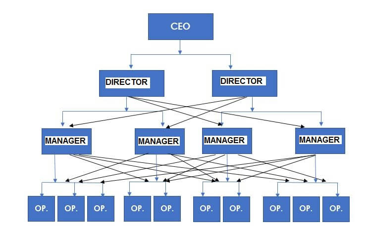 Organizational structure example – Functional