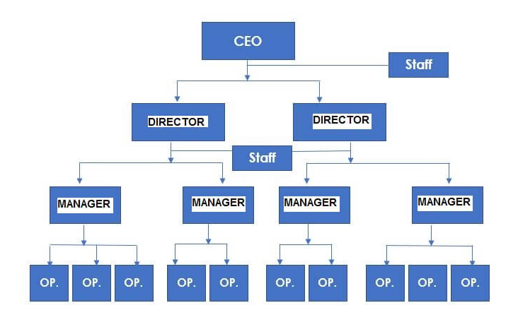 Organizational structure example – Line-and-staff