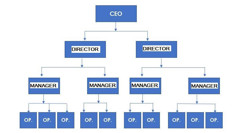 Organizational structure example – Line