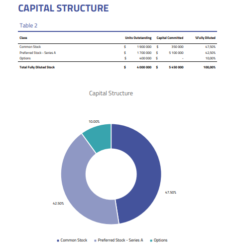 Capital structure - 409a valuation report